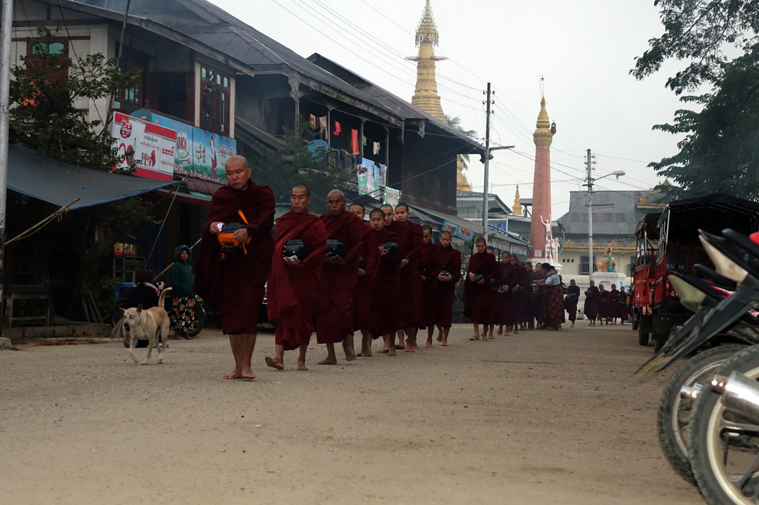 Buddhist monks arrive in the street of Katha in Burma for daily alms at daybreak