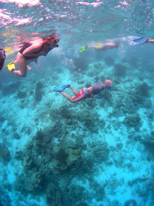 Drift snorkeling at Klein Bonaire