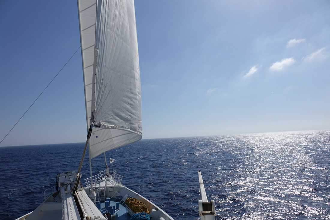 Sailing on Windstar Cruises Wind Surf
