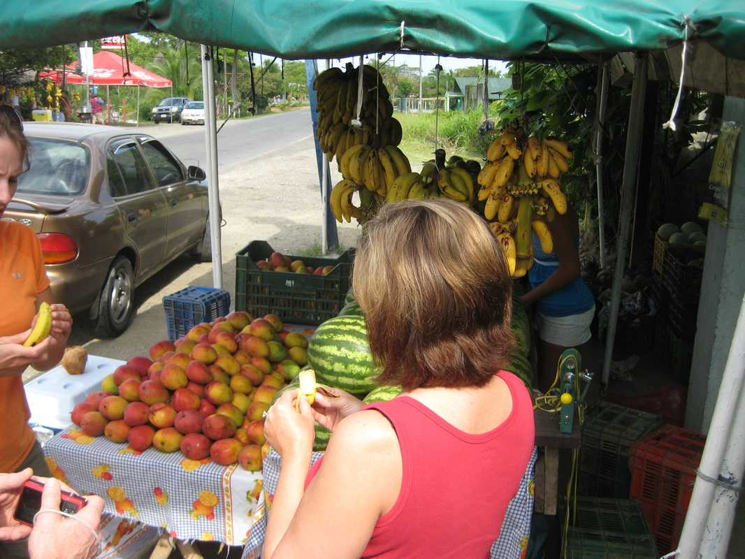 Visiting a fresh fruit stand in Costa Rica