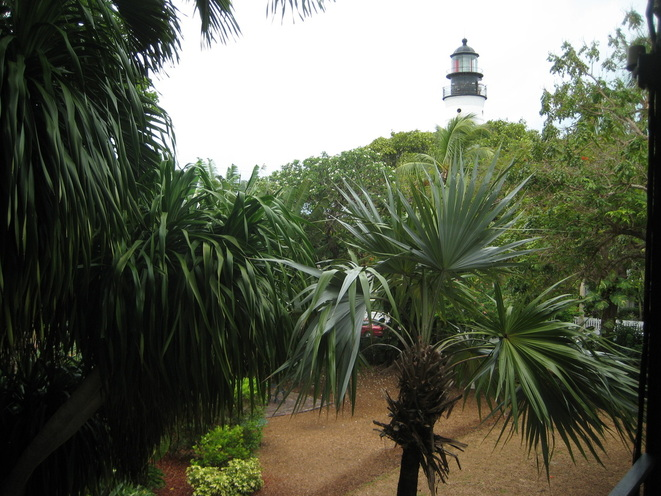 The Key West lighthouse viewed from the verandah of Hemingway's house.