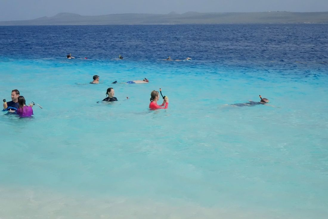 Swimming and snorkeling off Klein Bonaire