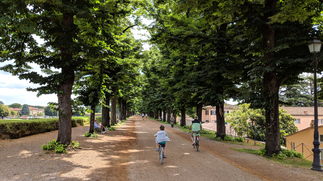 Lucca, Italy, park on the walls